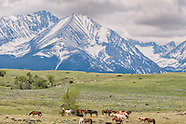 Crazy Mountains-Montana