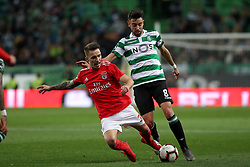 February 3, 2019 - Lisbon, Portugal - Benfica's Spanish defender Alejandro Grimaldo (L ) vies with Sporting's midfielder Bruno Fernandes from Portugal during the Portuguese League football match Sporting CP vs SL Benfica at Alvalade stadium in Lisbon, Portugal on February 3, 2019. (Credit Image: © Pedro Fiuza/ZUMA Wire)