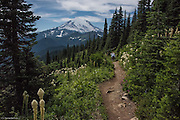 Hikers on Naches Peak Loop Trail with Mt Rainier in the background.