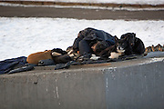 Moscow, Russia, 17/01/2006..A homeless man and a pack of sray dogs warm themselves on a heating vent by the roadside as a Siberian weather front brings temperatures down to minus 36C in the Russian capital and leads to power cuts in the city.