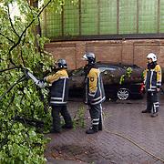 NLD/Bussum/20030502 - Boom omgevallen op auto na windhoos Nieuwe Spiegelstraat Bussum