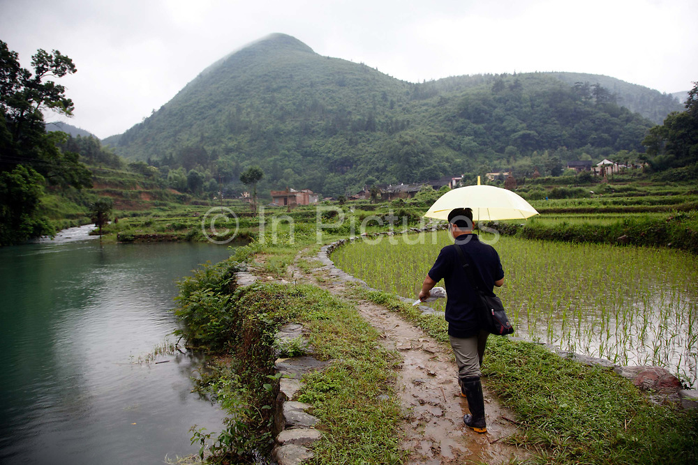 A man walks along a path leading up to the village of Duntang in Daoxian County, Hunan Province, China, on 03 June, 2010.  Duntang was connected to the main electricity grid and began to receive regular supply of electricity only since the beginning of 2009.