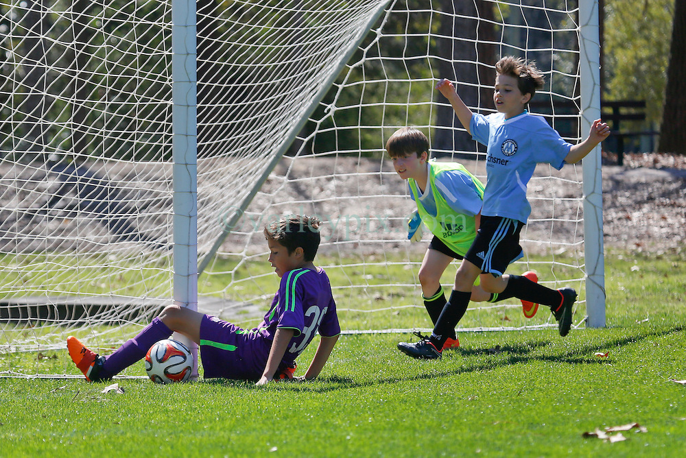 06 March 2016.  Mandeville, Louisiana.<br /> New Orleans Jesters Youth Academy U10 Purple vs Mandeville Soccer Club 'White.' Jesters emerge victorious 9-1.<br /> Photo©; Charlie Varley/varleypix.com