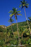 Guam, USA, Micronesia, ( Western Pacific Ocean )