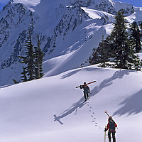 North Cascades National Park, Mount Baker Ski Area, Washington. Skiers hike up Shuksan Arm, below Mount Shuksan.