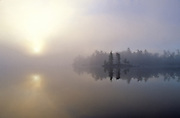 Foggy Morning Reflections - Quebec, Canada