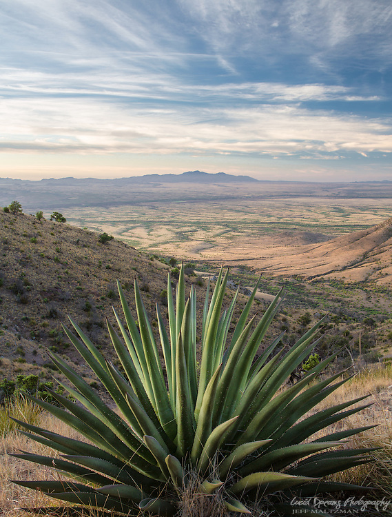 Coronado National Memorial, view into Mexico from Jack's Canyon trail