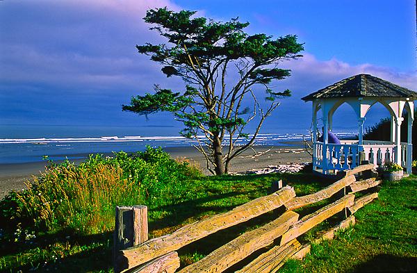 Sitka Spruce tree and gazebo at Kalaloch Beach near Kalaloch Lodge.  Olympic National Park, Washington, USA.