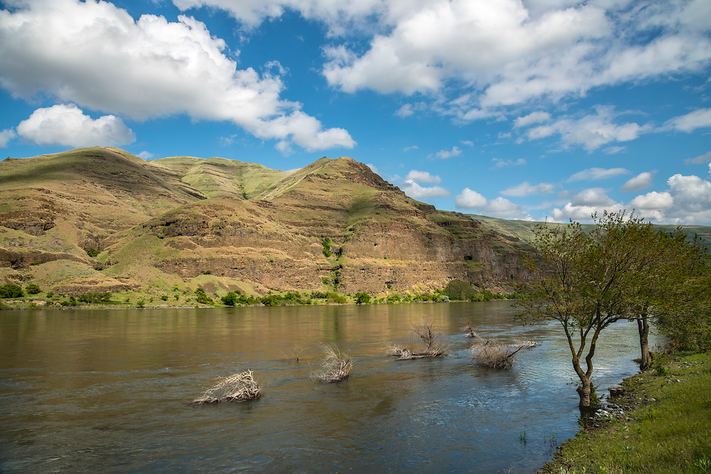Springtime along the Snake River at the bottom of Hells Canyon from the Washington side looking at volcanic cliffs on the Idaho Side. Licensing and Open Edition Prints.