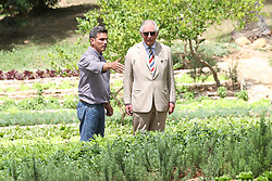 The Prince of Wales during a visit to the Finca Marta organic farm in the Caimito district, near Havana, Cuba, as part of an historic trip which celebrates cultural ties between the UK and the Communist state.
