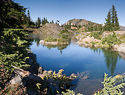 Tree fallen in Rampart Lakes, Alpine Lakes Wilderness, Wenatchee National Forest, Washington. Stitched from 3 images.