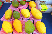 Etrog on display at the Tel Aviv 4 species market October 2006. Of the many symbols associated with Sukkot the most important are the Four Species. Etrog - The fruit of the goodly tree, also known as the citron. Palm branch - know as the lulav. Myrtle - the hadas and Willow - the aravah