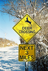 Crossing sign by snow covered road