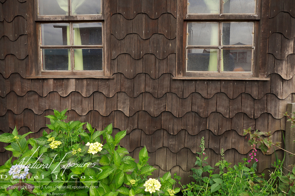 Flowers grow along a houses siding made up of special shingles known as tejuelas tiles, Achao, Chile.