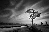 Vietnam Images-Fine art-infrared-landscape hoàng thế nhiệm