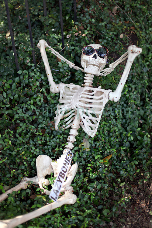 30 October 2015. New Orleans, Louisiana.<br /> The Skeleton Krewe mansion on St Charles Avenue at the corner of State Street draws crowds with its satirically spooky Halloween decorations. Lazy Bones.<br /> Photo©; Charlie Varley/varleypix.com