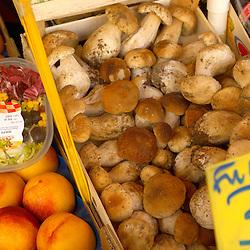 Fruit & Vegetable Stall - Porcini Mushrooms ; Market - Chioggia - Venice Italy