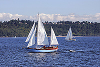 Yachts sailing on the Puget Sound, near Seattle, Washington State, USA, 200809060991.<br /> <br /> Copyright Image from Victor Patterson, Belfast, UK<br /> <br /> t: +44 28 9066 1296 (from Rep of Ireland 048 9066 1296)<br /> m: +44 7802 353836<br /> <br /> victorpattersonbelfast@gmail.com<br /> <br /> www.victorpatterson.com OR <br /> www.images4media.com<br /> <br /> Please see my Terms and Conditions of Use at https://www.victorpatterson.com/page2<br /> It is IMPORTANT that you familiarise yourself with them.<br /> <br /> Images used on the Internet incur an additional cost and must be visibly watermarked i.e. © Victor Patterson within the body of the image and copyright metadata must not be deleted. Images used on the Internet have a size restriction of 4 kbs and are chargeable at rates available at victorpatterson.com.<br /> <br /> This image is only available for the use of the download recipient i.e. television station, newspaper, magazine, book publisher, etc, and must not be passed on to any third party. It is also downloaded on condition that each and every usage is notified within 7 days to victorpattersonbelfast@gmail.com.<br /> <br /> The right of Victor Patterson to be identified as the author is asserted in accordance with The Copyright Designs And Patents Act (1988). All moral rights are asserted.
