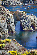 Pelican Point at Point Lobos Natural Reserve