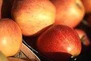 Close up selective focus photograph of a pile of Royal Gala apples