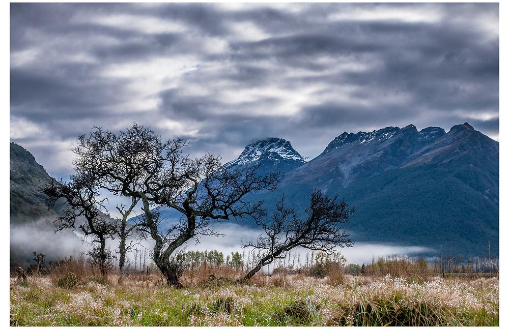 Paradise, Glenorchy, Otago.