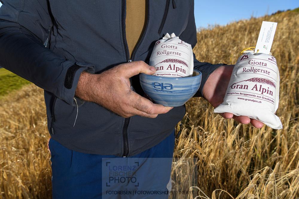 Roland Farrer in a field of barley (Hordeum vulgare), Parc Ela, Grisons, Switzerland