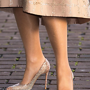 NLD/Amsterdam/20191104 - Maxima bij Prins Bernhard Cultuurfonds Prijs 2019, Beige pumps met glitter koningin Maxima