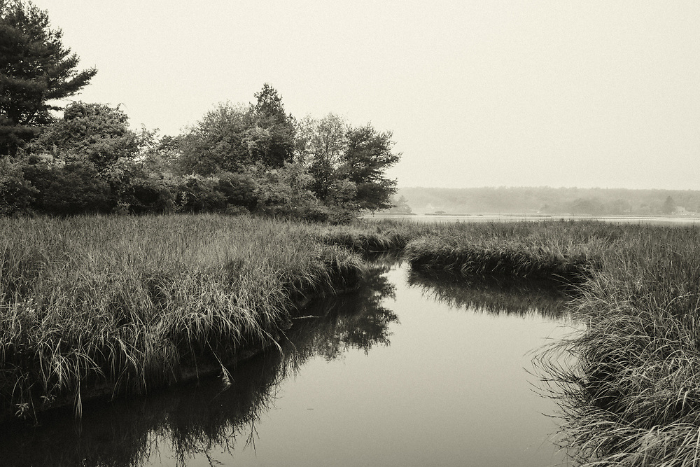 A marsh view from the Squirrel Point Light trail, looking out toward the Kennebec River. Georgetown Island, Maine.