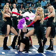 Anadolu Efes's show girls during their Turkish Basketball League match Anadolu Efes between Hacettepe Universitesi at Arena in Istanbul, Turkey, Sunday, November 20, 2011. Photo by TURKPIX