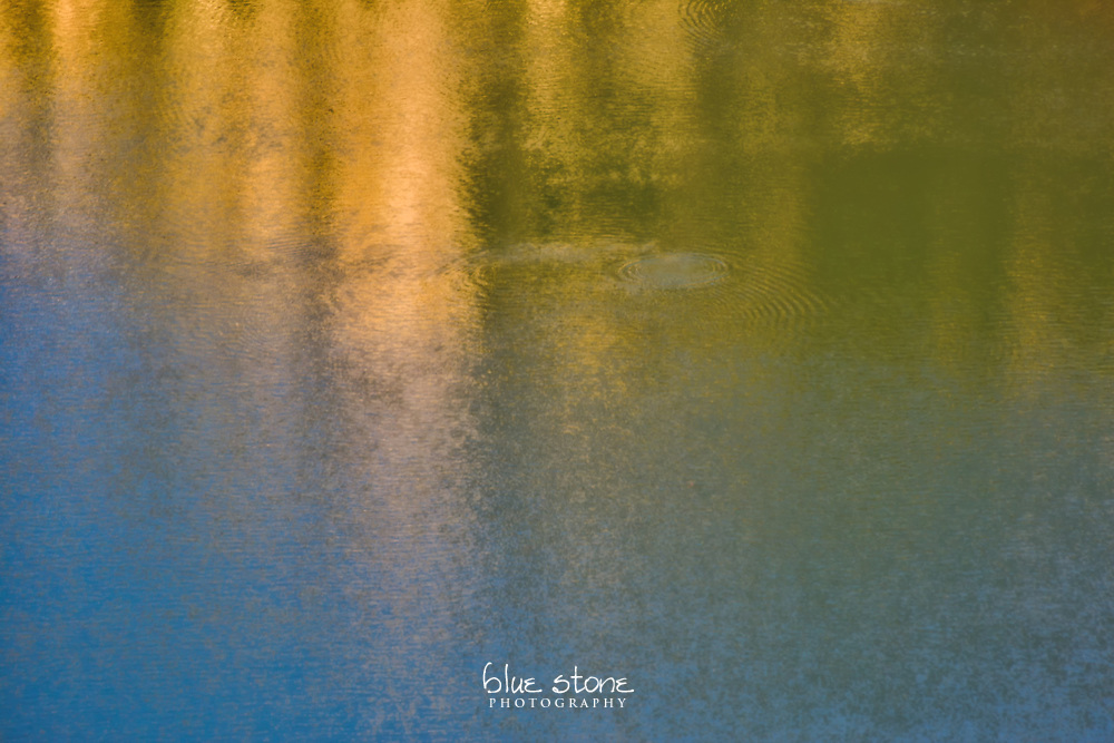 In her most solemn moments, Nature uses water colors to express her melancholy.