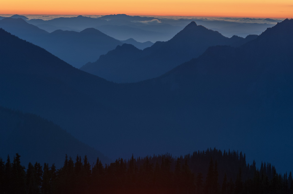 Sunset over the Olympic Mountains, July, view from Hurricane Hill, Olympic National Park, Clallam County, Washington, USA