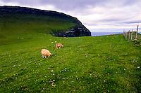 Faroe Islands. Green hills above Gjogv on the northeast tip of the island of Eysturoy.