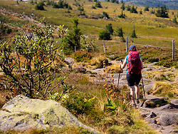 Rear view of women with backpack hiking over rocky path at Gazon du Faing, France