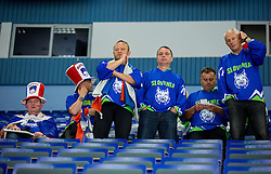 Fans of Slovenia look dejected after the Ice Hockey match between Slovenia and USA at Day 10 in Group B of 2015 IIHF World Championship, on May 10, 2015 in CEZ Arena, Ostrava, Czech Republic. Photo by Vid Ponikvar / Sportida