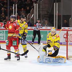 Tor DEG zum 1-0, Niclas Lucenius (Duesseldorfer EG, Nr. 11) jubelt vor dem geschlagenen Oskar Oestlund (Krefeld Pinguine, Nr. 55)<br /> im DEL-Spiel der Duesseldorfer EG gegen die Krefeld Pinguine (06.03.2020). beim Spiel in der DEL, Duesseldorfer EG (rot) - Krefeld Pinguine (gelb).<br /> <br /> Foto © PIX-Sportfotos *** Foto ist honorarpflichtig! *** Auf Anfrage in hoeherer Qualitaet/Aufloesung. Belegexemplar erbeten. Veroeffentlichung ausschliesslich fuer journalistisch-publizistische Zwecke. For editorial use only.