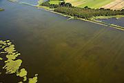 Nederland, Noord-Holland, Naarden, 14-07-2008; natuurgebied Naardermeer, oudste en een van de bekenste natuurreservaten van Nederland, bezit van de Vereniging voor Natuurmonumenten (grondlegger Jac. P. Thijsse); natuurreservaat, abstract beeld van ondergelopen weiland;.momenteel wordt het gebied uitsluitend doorsneden door de spoorlijn Weesp - Naarden/Bussum, er zijn echter plannen om een nieuwe weg aan te leggen vlak langs en onder het gebied,namleijk tussen het nabij gelegen Almere en Amstelveen (en door naar Schiphol) dit in verband met de fileproblematiek rond de hoofdstad; Rijkswaterstaat overweegt echter de Gaasperdammerweg te verbreden ivm die files en zo het Naardermeer te sparen; . .luchtfoto (toeslag); aerial photo (additional fee required); .foto Siebe Swart / photo Siebe Swart