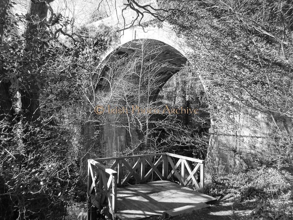 Knocksink Bridge, Enniskerry, Wicklow, 1859.