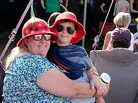 the  Wickham Festival in Hampshire photo by Dawn fletcher-park