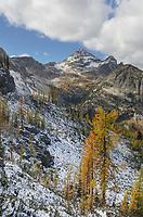 Black Peak and larches in autumn color. North Cascades Washington