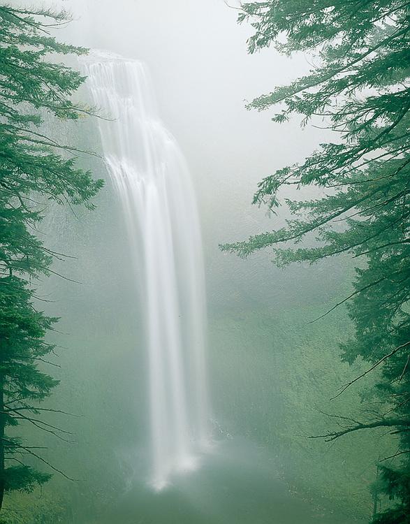 Salt Creek Falls, Cascade Mountains, Willamette National Forest, Oregon.  USA