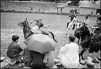 Pakistan, Territoires du Nord, Gilgit, Match de Polo. // Pakistan, Disputed Territory, Polo match at Gilgit