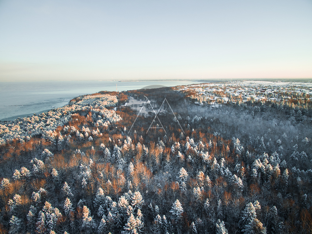 Aerial view of the snowy forest on the coast of Estonia during winter.