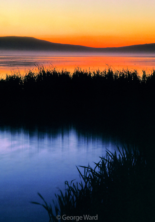 Tule Lake before Dawn, Tule Lake National Wildlife Refuge, California
