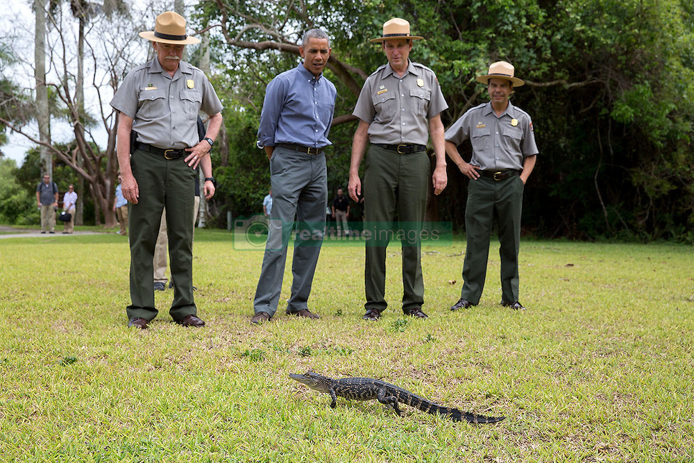 President Barack Obama and U.S. Park Service rangers view a small alligator during a tour at Everglades National Park, Fla., on Earth Day, April 22, 2015. (Official White House Photo by Pete Souza)<br /> <br /> This official White House photograph is being made available only for publication by news organizations and/or for personal use printing by the subject(s) of the photograph. The photograph may not be manipulated in any way and may not be used in commercial or political materials, advertisements, emails, products, promotions that in any way suggests approval or endorsement of the President, the First Family, or the White House.