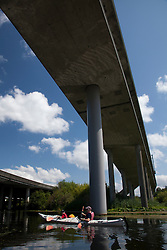 North America, United States, Washington, Bellevue, kayaking under highway bridge in Mercer Slough Nature Park.