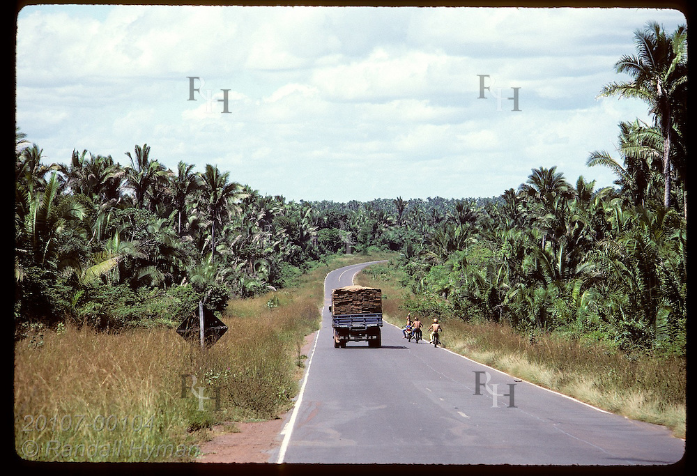 Bikers pass truck on road lined by babassu palms-- tree of food, fuel & shelter for Maranhao poor Brazil