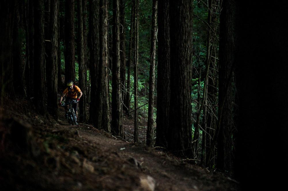 Patchen Homitz, post-work, pre-beer loop, Tamarancho trail, Marin, California.