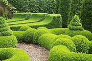 A close-up view of the topiary  in the courtyard parterre at Bourton House, Gloucestershire.<br /> <br /> The amazingly intricate designs in clipped box (Buxus sempervirens) include not only standard 'lollipops' and cones, but the most incredible spirals, concave wedges and rope-edged low hedges. <br /> <br /> Date taken: 18 June 2010.