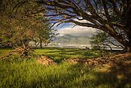 Sunrise on the North shore of Maui, Hawaii, near Waiahu.