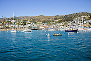 Downtown Avalon Harbor Catalina Island